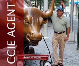 CCIE Agent