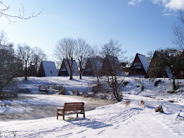Forda Lodges in the winter