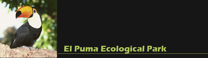 El Puma Ecological Park