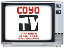 Televisión Cultural en la Red