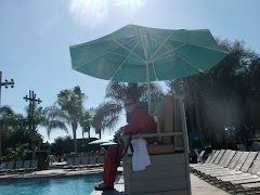The Lifeguard wore sweats!  The bathers are all in the hot tub.  Cold snap in Orlando FL