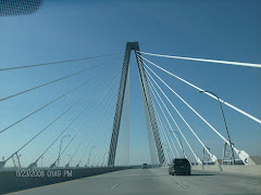 The 'spiderweb' bridge at Charleston from the car.