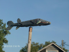 The 'fish' of Leland, MI