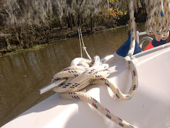 For the first time ever, we tied the stern to a tree.  Next day we got out the extra anchor.