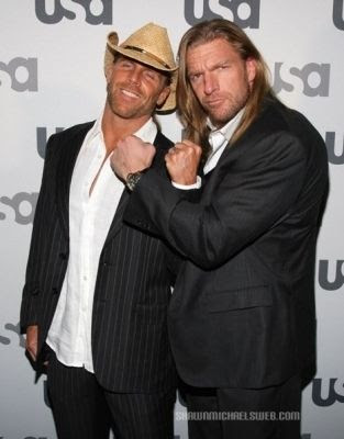 The Stalker Game! - Page 5 Shawn_michaels_and_triple_h_wwe_2056531_313_400