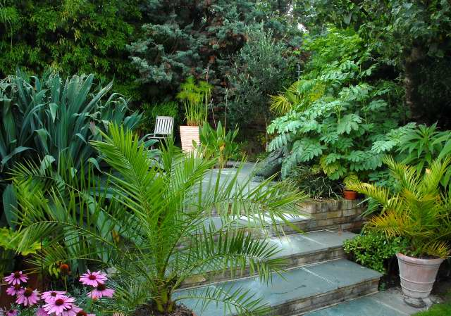 Small Tropical Garden Ideas Photograph Exotic Tropical Pat