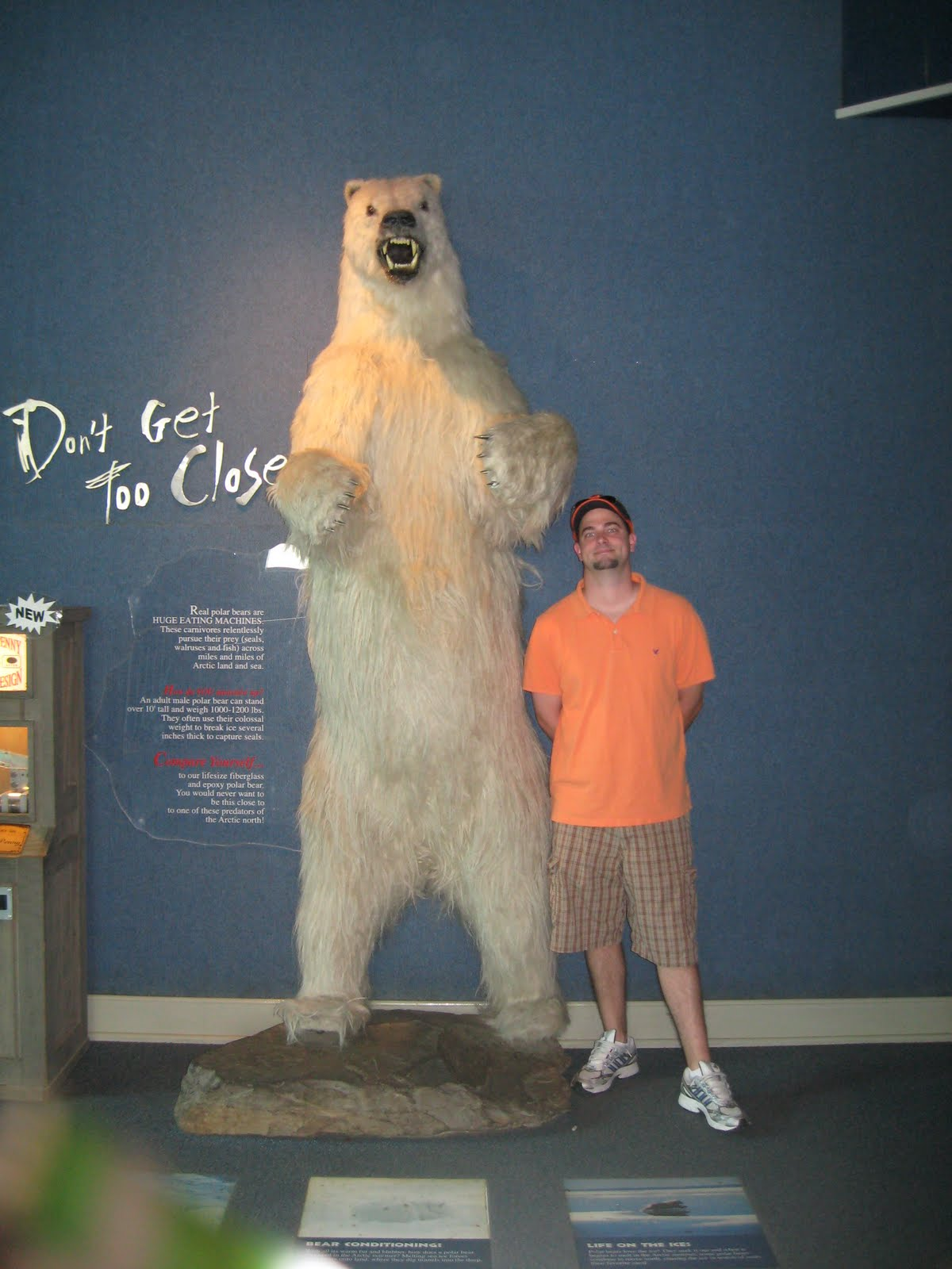 put us in the zoo sluiter nation our friends near rochester and on the way home we stopped in the toledo zoo this has been my favorite zoo so far look at those big polar bears