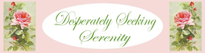 Desperately Seeking Serenity