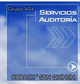 GRUPO 504