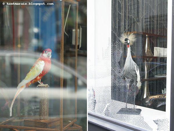 Oiseaux chez Les Fées rue de Poitou / Charlot Paris Haut Marais