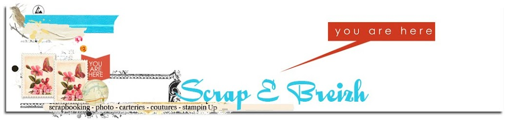 Scrap E Breizh