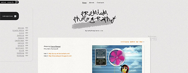 Premium Photography Blogger Template