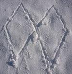 Pintadas dos rombos en la nieve