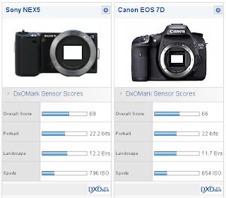 sony nex sensor vs canon 7d