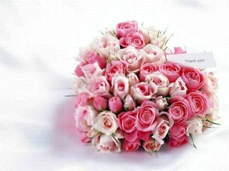 i love u rose wallpaper. GIFT WITH ROSE FOR YOUR LOVED