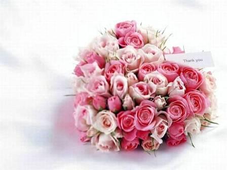 wallpaper gift. i love u rose wallpaper. GIFT
