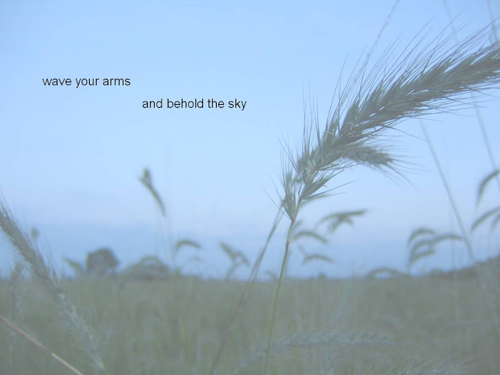 Wave Your Arms and Behold the Sky
