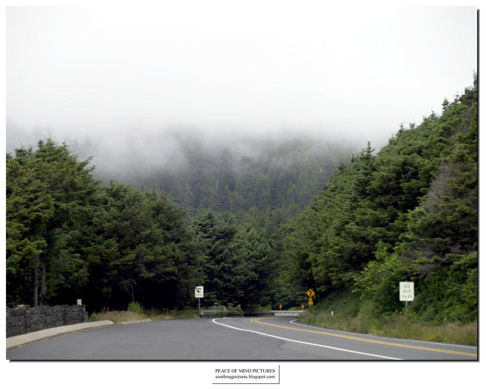 http://1.bp.blogspot.com/_8KMrX6Wq1ko/TLcU6g8g6xI/AAAAAAAAH6U/iufTeUiKJq0/s1600/peace-of-mind-pictures-fog-013.jpg