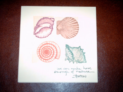 I have a lot of shell-themed stamps too