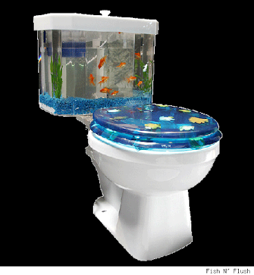 Facts around us 25 craziest fish tank fish reef aquarium for How to clean an old fish tank