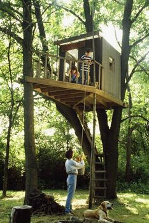 Coolpics 20 awesome treehouses we 39 ve always wanted for Awesome tree house plans