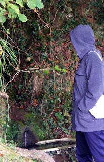 El tamaño de la Fuente del Nora en Octubre de 2009