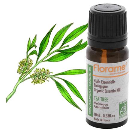 360 Health: Tea Tree Oil For Nail Fungus Treatment