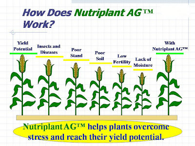Nutriplant Crop Yield Potential