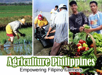 Philippine Farming