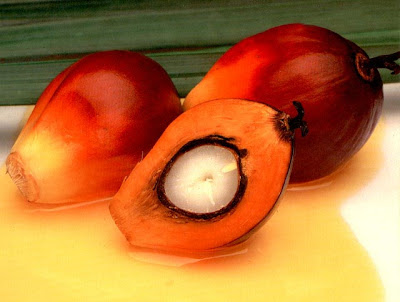 Palm Oil
