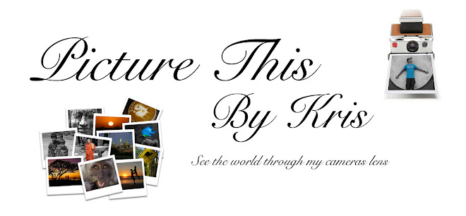 Picture This By Kris