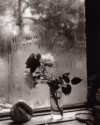 UN RINCONCITO PARA LA LECTURA - Página 2 Flores+en+florero