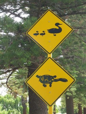 funny signs around world. funny signs around the world.