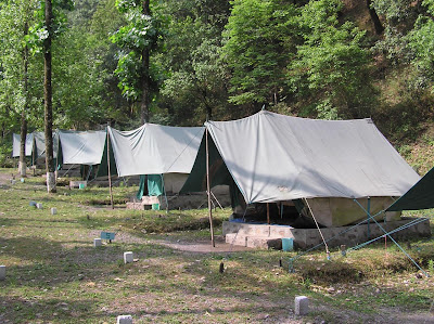 A line of tents at Saatal Jungle camp