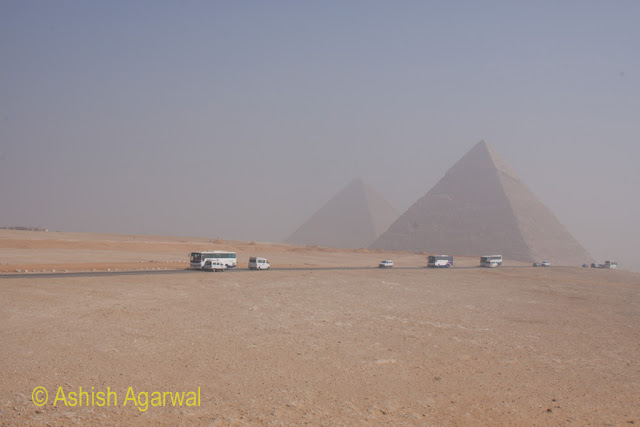 A panoramic view of buses with the background of the Pyramids in Giza