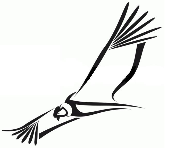 Mostrar dibujos del condor - Imagui