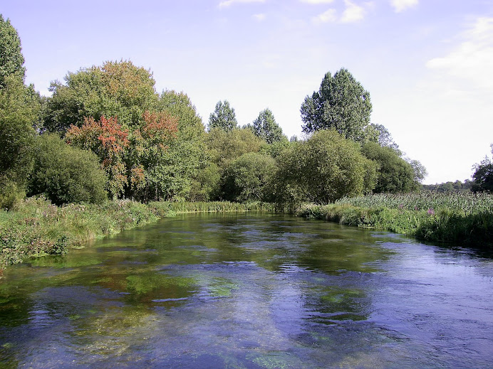 The River Itchen near Eastleigh