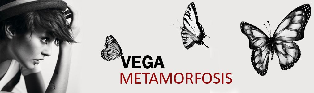Más cerca de Vega (blog no oficial)