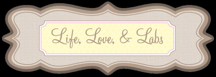 Life, Love, & Labs