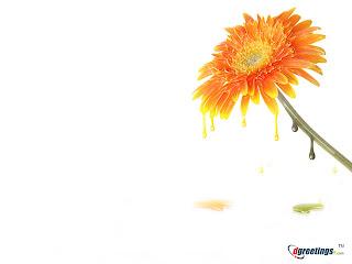 Happy New Year Flower Wallpaper