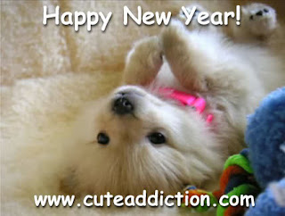 puppy wishing happy new year
