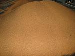 Kami memproduksi Gula Semut Aren berkualitas tinggi