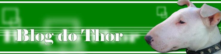 Diário do Thor, um Bull Terrier