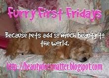 http://1.bp.blogspot.com/_8ZpeZz4bKaY/TUt8t7Ki6EI/AAAAAAAAC40/vA4HtWOxFQU/s1600/Furry+First+Fridays+small.jpg