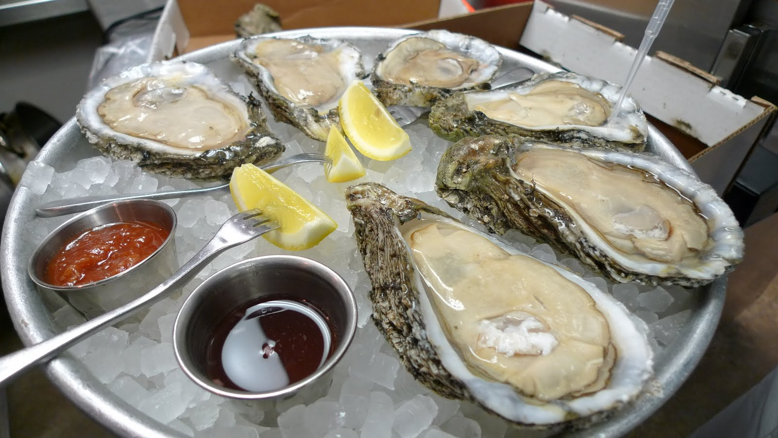 Live Oysters On Beach