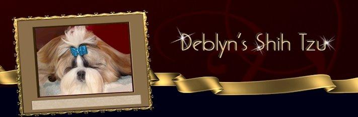 Deblyn's Shih Tzu