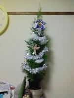 去年もらった子どもの出生記念樹がクリスマスツリーの巻。