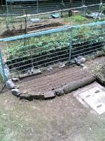 住んでいる団地の畑で自分の庭を手に入れた。