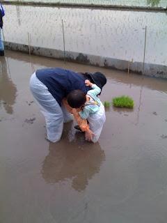 越谷市鴨ネギ鍋の田植え&稲刈り農業体験でつかみ合う嫁と息子
