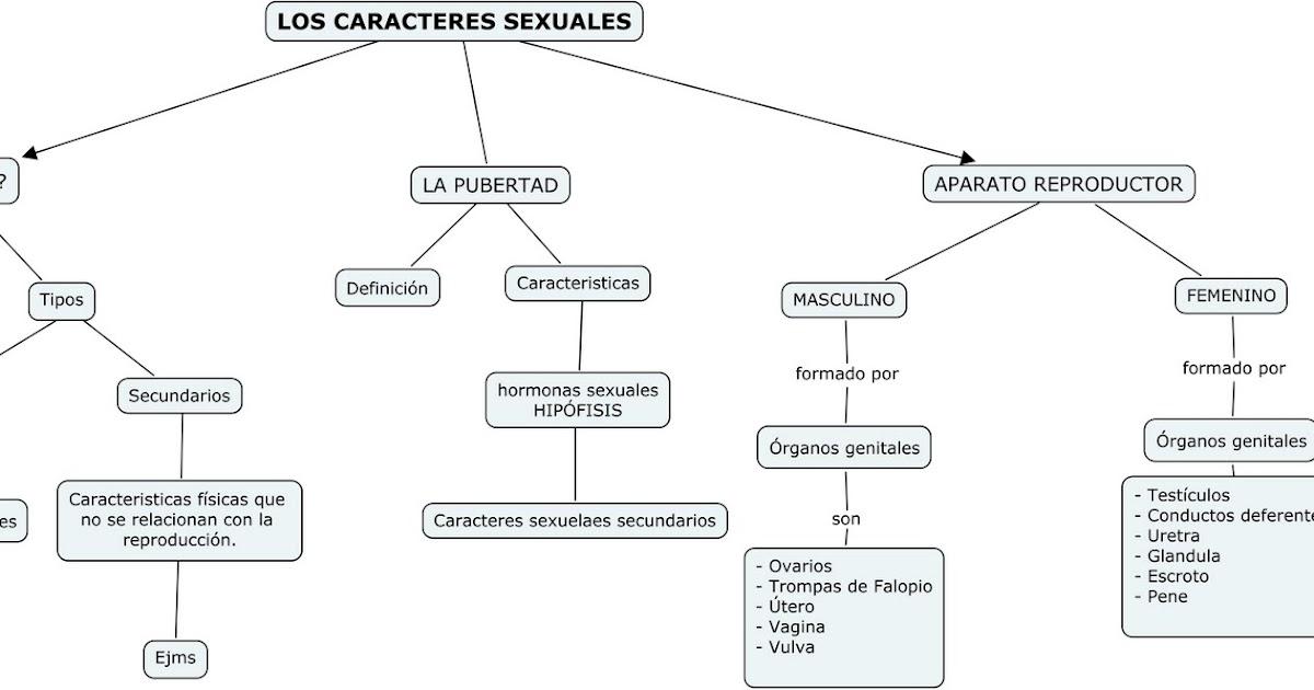 Blog de Leo. (Gerindote): Resumen y esquema de los caracterers sexuales